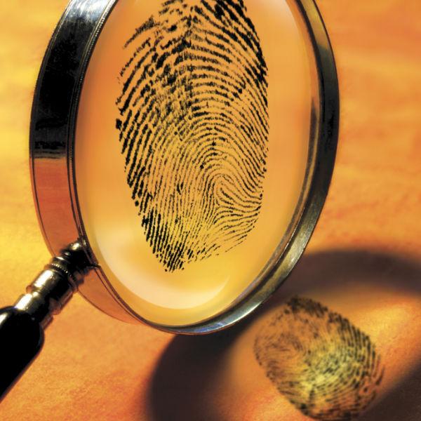 Wurden alle Spuren entdeckt? • Foto: Terry Why / Getty Images