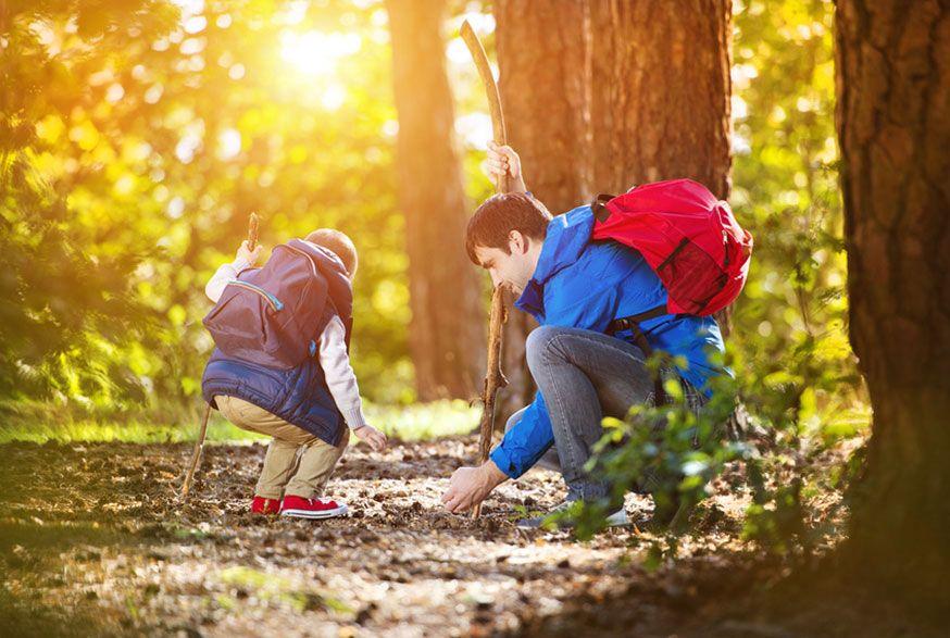 Im Wald gibt es für Groß und Klein immer wieder Neues zu entdecken. • Halfpoint / Fotolia.com