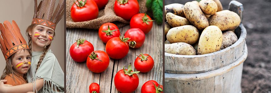 Ob Tomaten, Kartoffeln oder Mais - vieles von unserem Gemüse haben wir von den Indianern. • Fotos: Waldru / Fotolia.de; colourbox.de