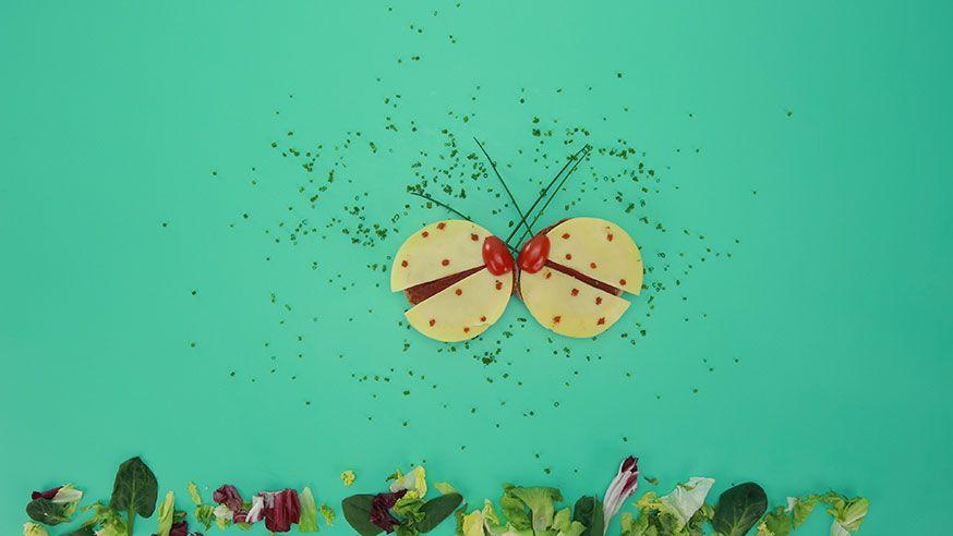 Statt Käseigel gibt's auf diesem Geburtstag Käse-Käfer! Süße Idee für die Waldparty. • Foto: U. Miers, Foodproduktion: Dagmar von Cramm