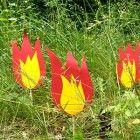 Feuerwehrparty-Dekoidee-Feuer